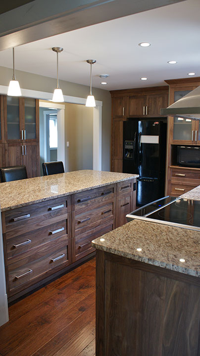 Kitchen Cabinets and Renovations